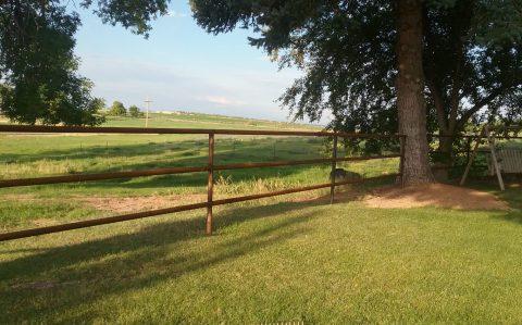 fencing-corrals